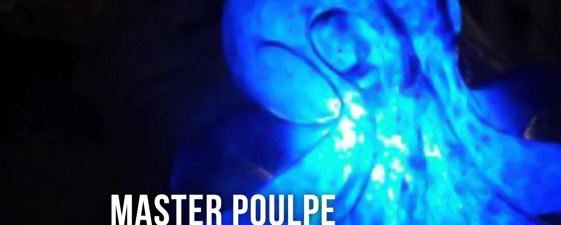MASTER_Banniere_Master_All-Light-02