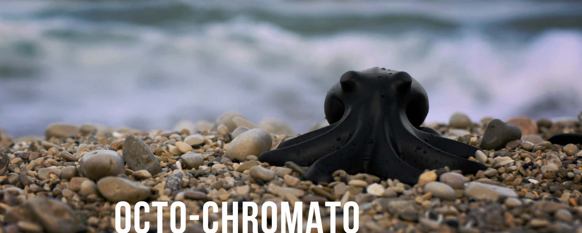 NOIR_Banniere_Chromato